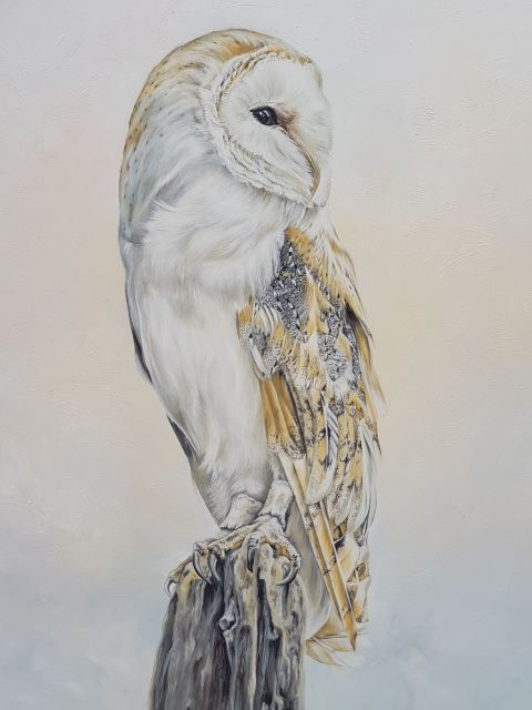 Anna Reed Fine Art Barn Owl